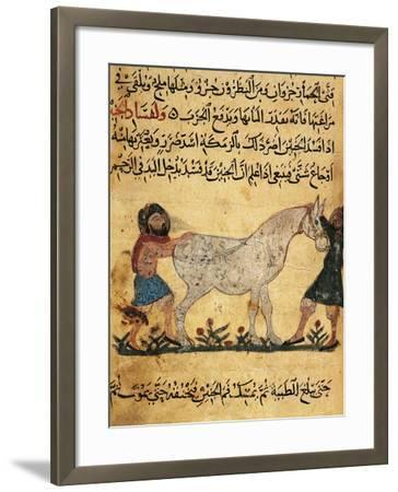 A Man Assisting a Mare Giving Birth to a Foal, Miniature from a Treatise on Horses--Framed Giclee Print