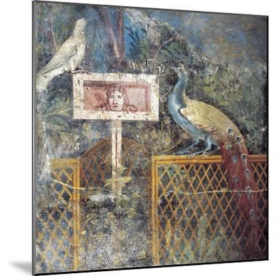 Ancient Roman Fresco with Birds and Tragic Theatre Mask--Mounted Giclee Print