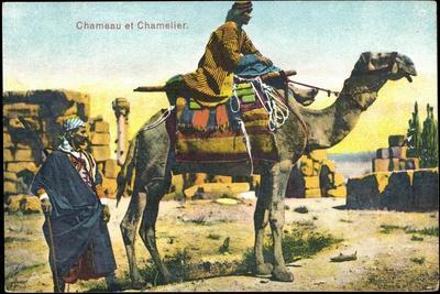 Kamel, Chameau Et Chamelier, Kamel Und Kameltreiber, Bunte Sitzdecken--Framed Giclee Print