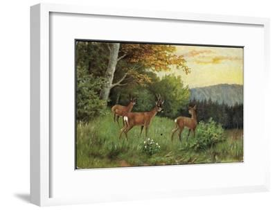 Hirsche, Junge Rehkitze Und Hirsche Am Waldesrand--Framed Giclee Print