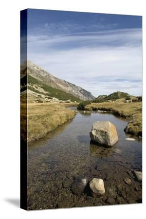 Bulgaria, Pirin Mountains, Pirin National Park, Stream with Large Stone--Stretched Canvas Print
