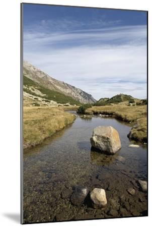 Bulgaria, Pirin Mountains, Pirin National Park, Stream with Large Stone--Mounted Giclee Print