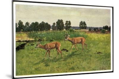 Künstler Christian Haug, Junge Rehe Auf Der Grünen Wiese--Mounted Giclee Print