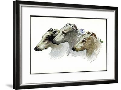 Künstler Jos. Gaber, Drei Windhunde, Schnauzen, Schleifen--Framed Giclee Print
