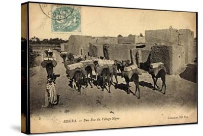 Biskra Algerien, Une Rue Du Village Nègre, Bepackte Kamele--Stretched Canvas Print