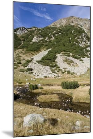 Bulgaria, Pirin Mountains, Pirin National Park, Distant Mountain--Mounted Giclee Print