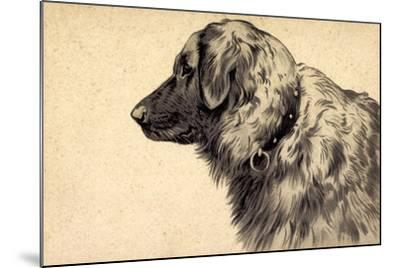 Präge Hund, Seitenprofil Mit Hundehalsband--Mounted Giclee Print