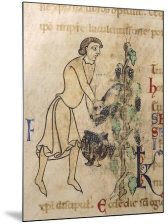 Allegory of September, Miniature from a Martyrology, 12th Century--Mounted Giclee Print