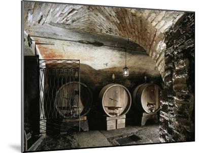 Italy, Brescia, Castle of Bornato, Wine Cellar--Mounted Giclee Print