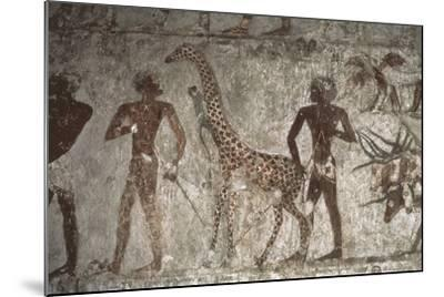 Mural Paintings of Tributes from Foreign Peoples, Detail of Giraffe from Punt--Mounted Giclee Print