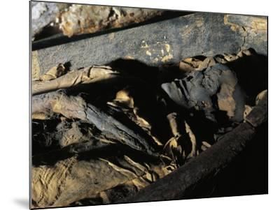 Close-Up of a Decomposed Mummy, Museo Archeologico Nazionale, Florence, Tuscany, Italy--Mounted Giclee Print
