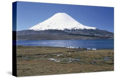 Chile, Norte Grande, Tarapacá, View of Chungara Lake and Parinacota Volcano in Andes Mountains--Stretched Canvas Print