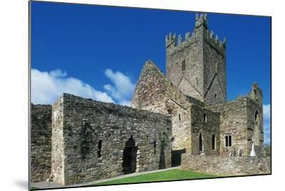 Jerpoint Abbey, Cistercian Abbey, Founded in 1158, County Kilkenny, Ireland--Mounted Giclee Print