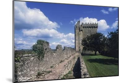 View of Blarney Castle, County Cork, Ireland--Mounted Giclee Print
