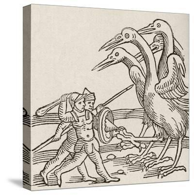 Fight Between Pygmies and Cranes. a Story from Greek Mythology--Stretched Canvas Print