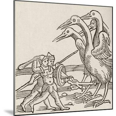 Fight Between Pygmies and Cranes. a Story from Greek Mythology--Mounted Giclee Print