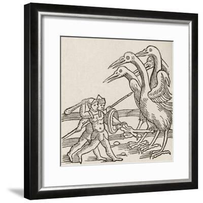 Fight Between Pygmies and Cranes. a Story from Greek Mythology--Framed Giclee Print