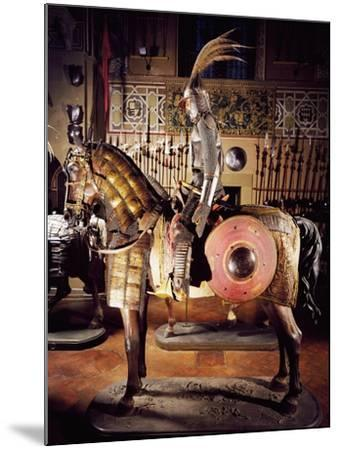 Armor in Steel, Gold, Silver, Chain Mail, Leather and Fabric--Mounted Giclee Print
