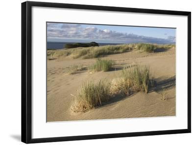 Lithuania, Klaipeda County, Curonian Spit, Beach--Framed Giclee Print