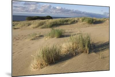 Lithuania, Klaipeda County, Curonian Spit, Beach--Mounted Giclee Print