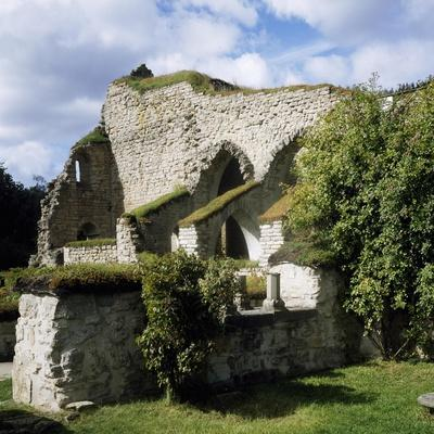 Ruins of Abbey Founded by Cistercian Monks, 1143, Alvastra, Sweden--Framed Giclee Print