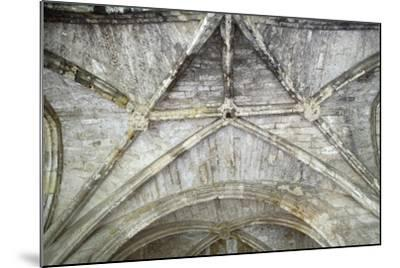 Cross Vaults, Detail from Cloisters of Narbonne Cathedral, Narbonne, Languedoc-Roussillon--Mounted Giclee Print