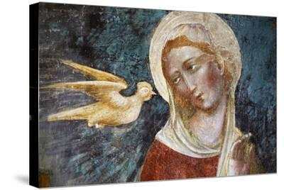 Dove of Holy Spirit and the Virgin--Stretched Canvas Print
