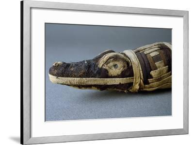 Stuffed Crocodile, Dating from Roman Period AD, Detail--Framed Giclee Print