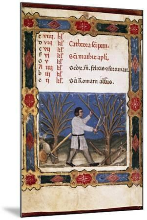 Work in the Fields, Miniature from Opificium Beatae Mariae Virginis, Latin Manuscript--Mounted Giclee Print