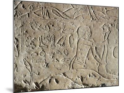 Detail of Ancient Egyptian Limestone Relief Depicting Butchering of Bull, Old Kingdom--Mounted Giclee Print