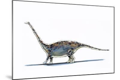 Illustration of Barapasaurus - Artwork--Mounted Giclee Print
