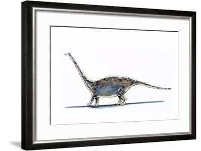Illustration of Barapasaurus - Artwork--Framed Giclee Print