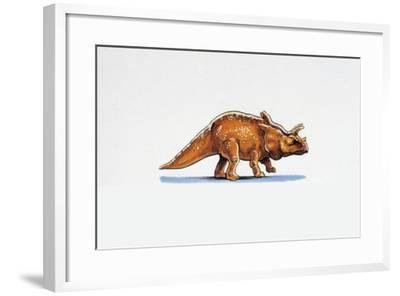 Illustration of Arrhinoceratops--Framed Giclee Print