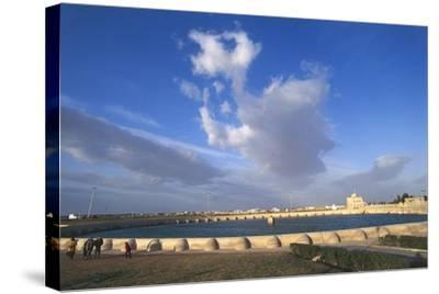 Tunisia, Kairouan, Aghlabid Basin--Stretched Canvas Print