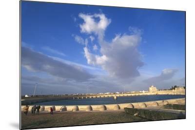 Tunisia, Kairouan, Aghlabid Basin--Mounted Giclee Print