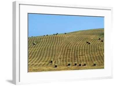 Italy, Tuscany, Val D'Orcia Natural Park, Rural Landscape--Framed Giclee Print