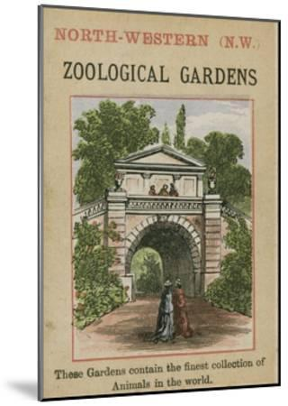 Zoological Gardens--Mounted Giclee Print
