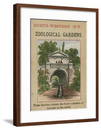 Zoological Gardens--Framed Giclee Print