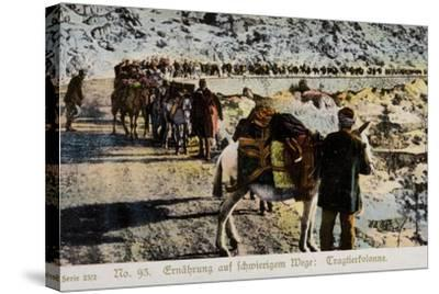 Mule Train on a Mountain Road--Stretched Canvas Print