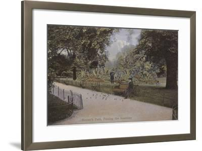 Regent's Park, Feeding the Sparrows--Framed Photographic Print