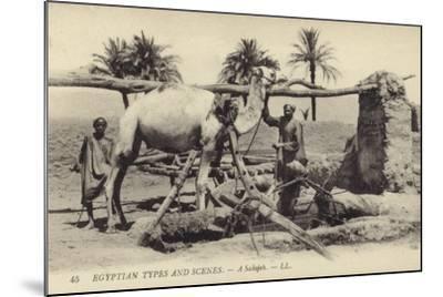 A Sakijeh--Mounted Photographic Print