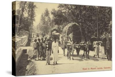 Road to Mount Lavania in Colombo--Stretched Canvas Print