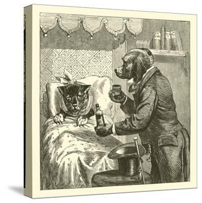 Dog Giving Pills to Sick Cat--Stretched Canvas Print