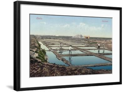 Salt Ponds, Cadiz, Spain--Framed Photographic Print