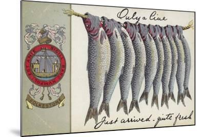 Fresh Fish of Folkstone--Mounted Giclee Print