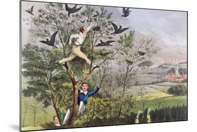"Who-Whoop! I'Ve Done it - Raiding the Rookery from Nimrod's ""The Life of a Sportsman, 1874""--Mounted Giclee Print"