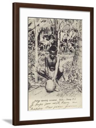 Native Opening Cocoanut--Framed Photographic Print