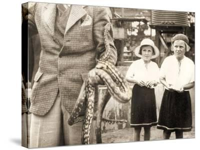 Visitors at Taronga Zoo, Sydney, Australia. 1932--Stretched Canvas Print