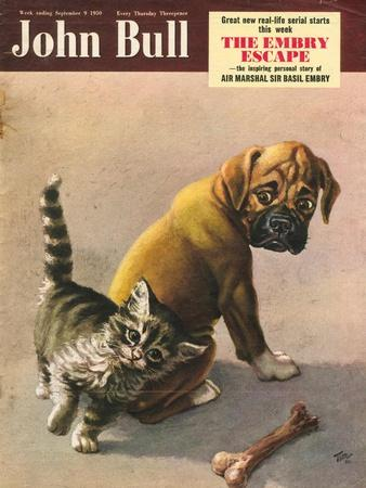 Front Cover of 'John Bull', September 1950--Stretched Canvas Print