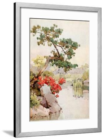 Azalea and Pine-Tree-Ella Du Cane-Framed Giclee Print